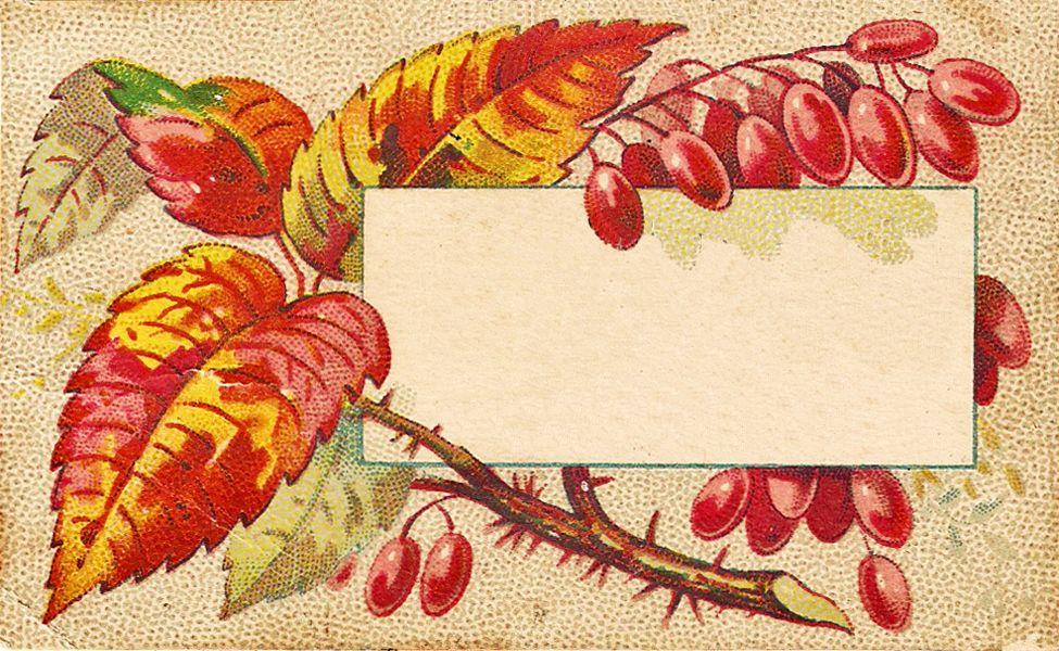 Fall Leaves Clip Art | Free Vintage Clip Art - Autumn ...