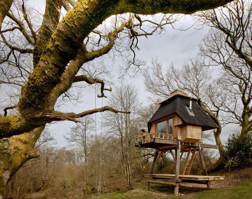 Cómo construir paso a paso una casa de madera a la altura de la copa ...