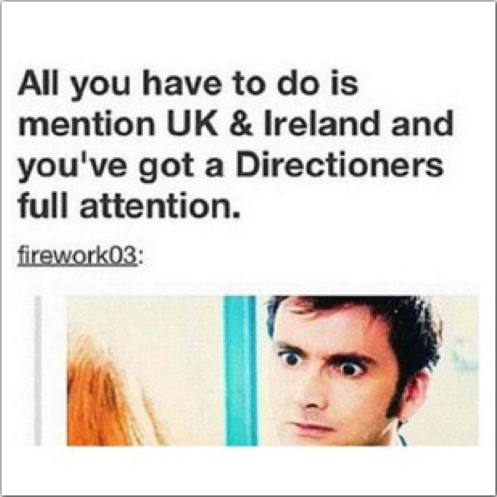 Or Any Of The Crews Names Or Anything From The Video Diaries Or Anything One Direction Related One Direction Humor One Direction Memes I Love One Direction