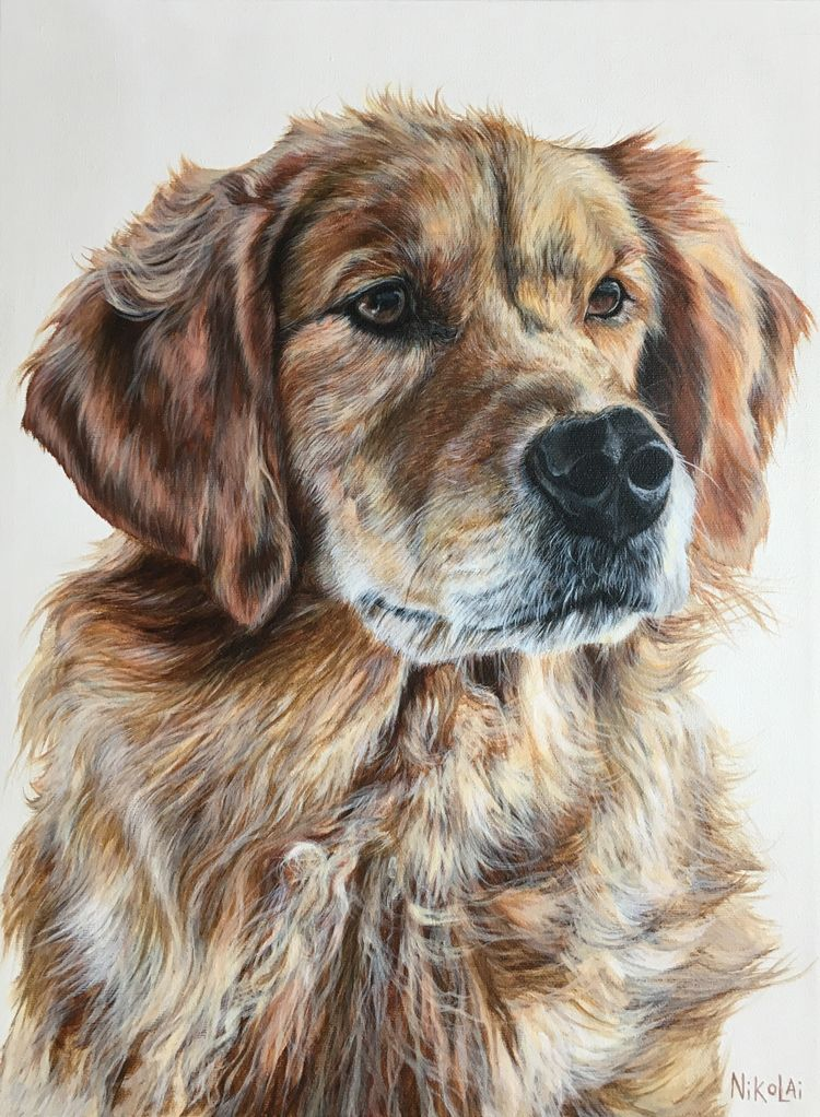 Pongo Acrylic On Gallery Style Canvas 16 X 12 Winnipeg Mb