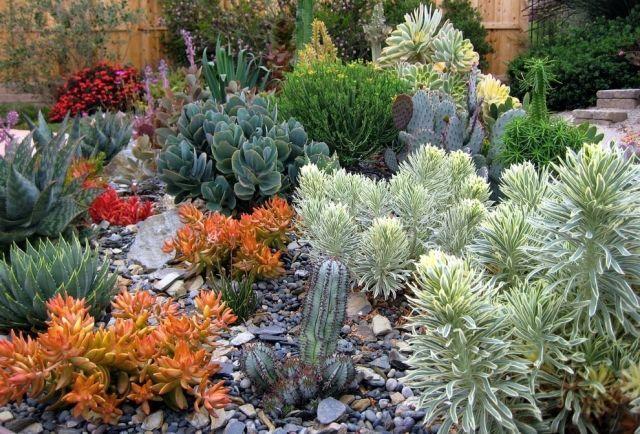 Steingarten anlegen mit-Sukkulenten Arten-Gartendesign Garten - kleiner steingarten bilder