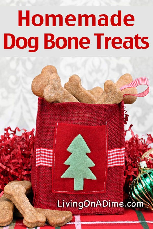 5 Homemade Treats Recipes For Your Dog and Cat Homemade