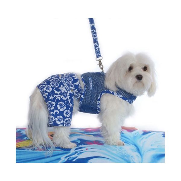 Take Your Maltese To Hawaii Love These From Baxter Boo Website