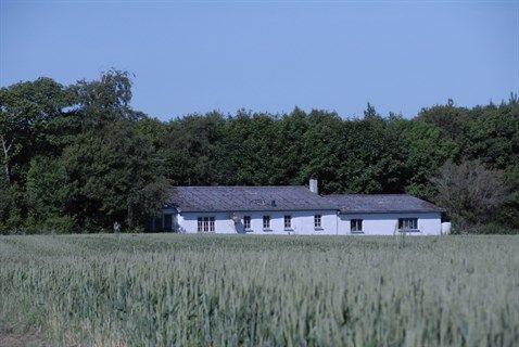 Korsvejen 65, 9620 Aalestrup - Dejligt etplans hus på landet, med stort værksted og stor grund #aalestrup #villa #selvsalg #boligsalg
