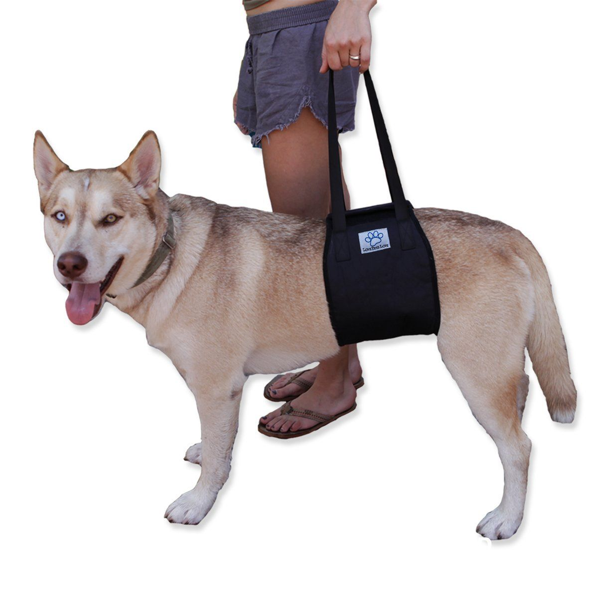 Dog Lift Harness With Handle Support Rehabilitation Canines Aid