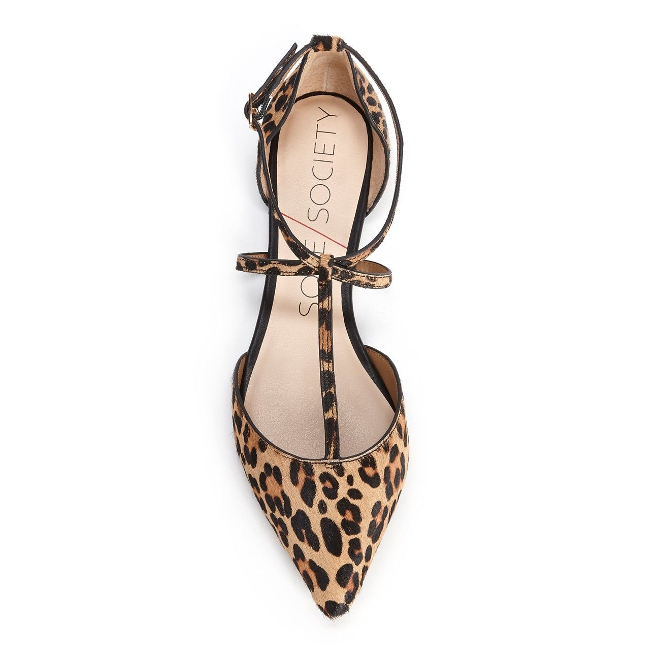 Women's Leopard Black Haircalf 1/8 Inch T-strap Flat   Chandler by Sole Society