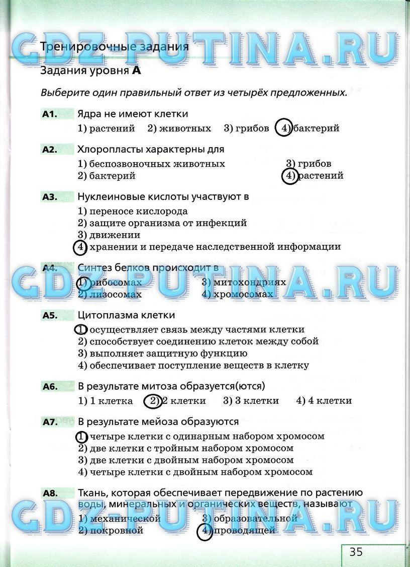 Уроки русского языка 8 класс богданова читать