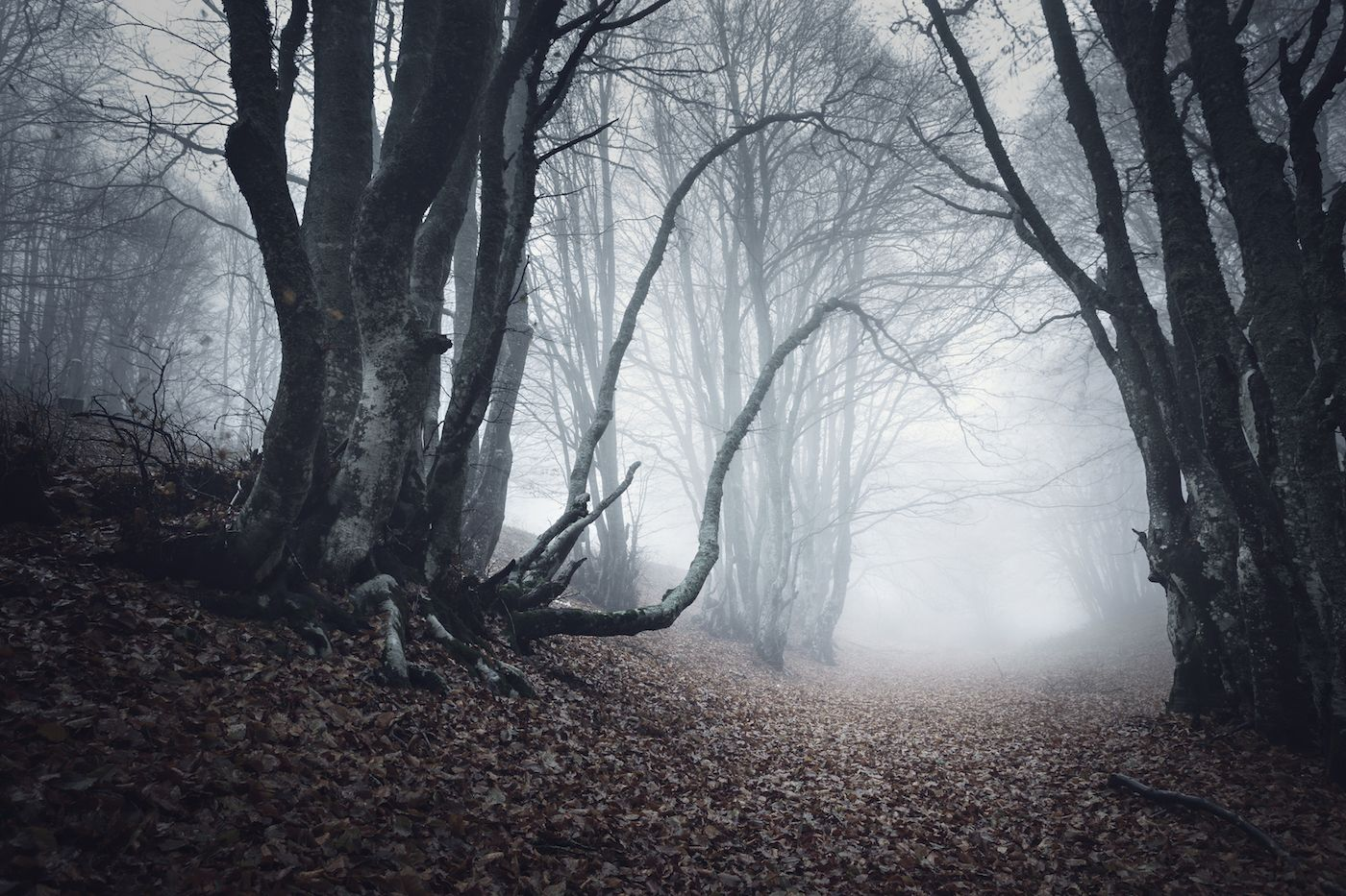 What Long Island haunted adventures will this season bring and…will we crack?