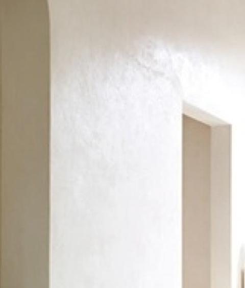 Warm white venetian plaster walls for guest bath with wow for Venetian plaster bathroom ideas