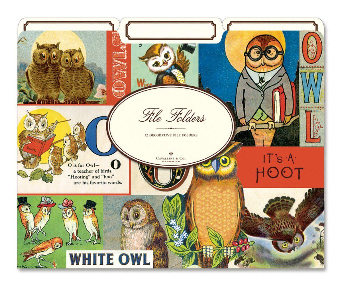 Amazon Com Cavallini Vintage Owls 12 Heavyweight File