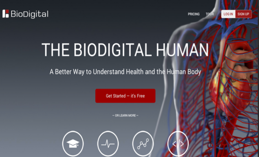 Great Websites To Teach Anatomy Of Human Body In 3d School Stuff