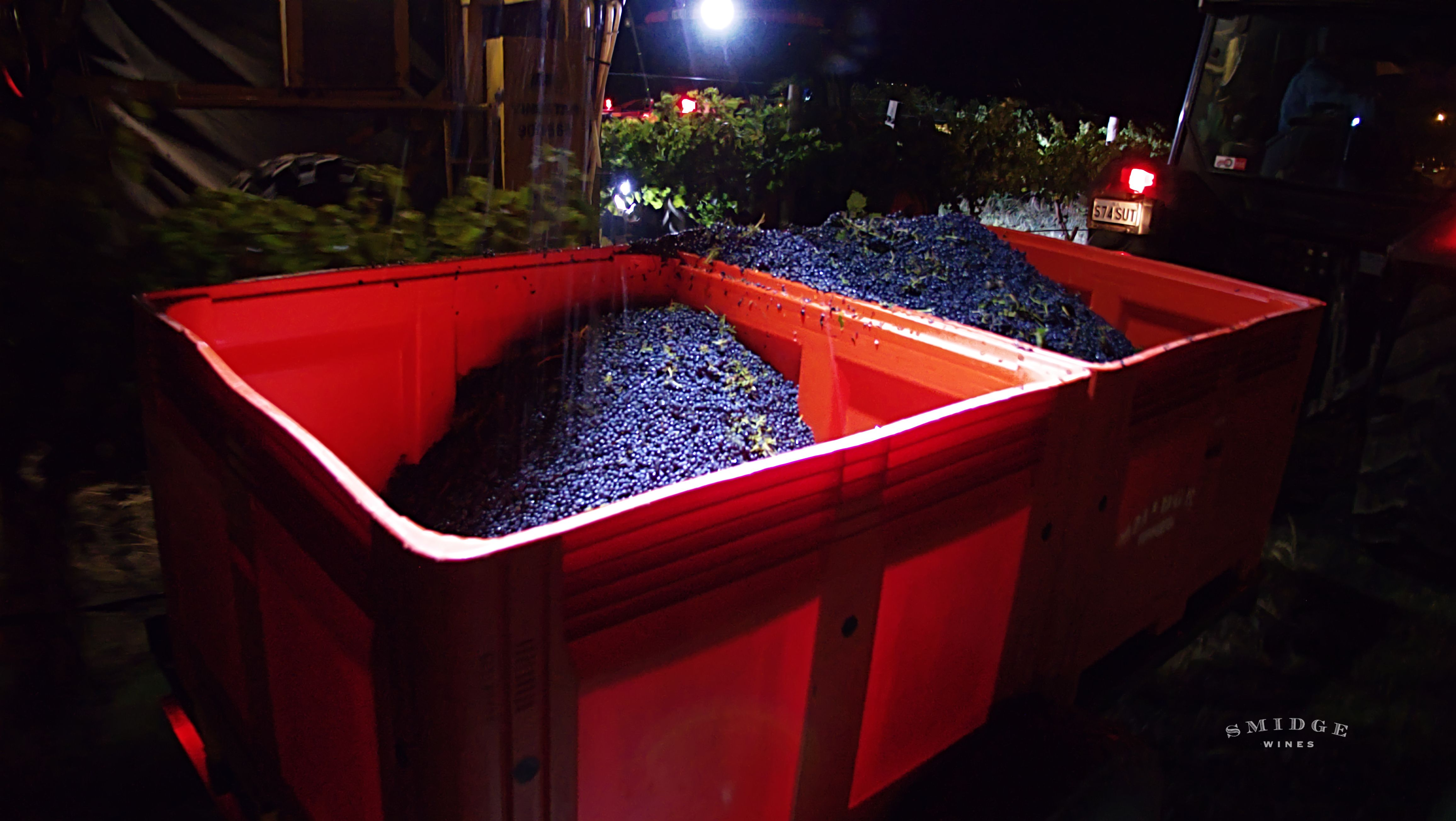 When Vintage Ended Last Month This Was The Scene It S About 10pm And Time To Gather Up A Great Vintage From Our Mclaren Vale Vineyard Th With Images Vintage Diary Wines