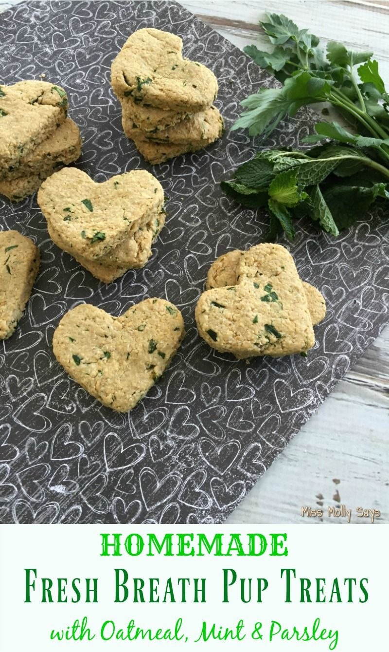 Homemade fresh breath pup treats recipe with images