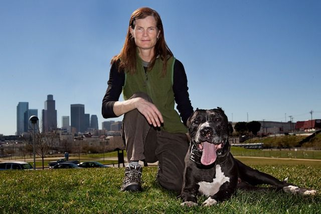 Meet The Pitbull Lady Lori Weise Of Downtown Dog Rescue Rescue Dogs Dog Hero Homeless Dogs