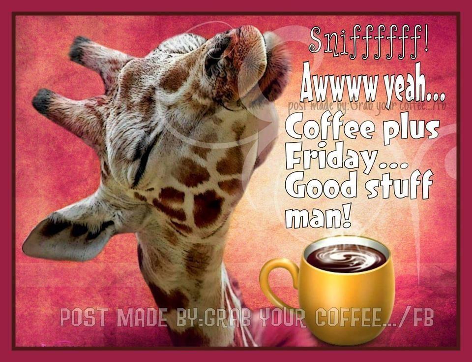 Awwww Yeah Coffee Plus Friday Good Stuff Man Friday Friday Quotes Friday Images Coffee Friday Quot Morning Coffee Funny Friday Coffee Quotes Friday Coffee