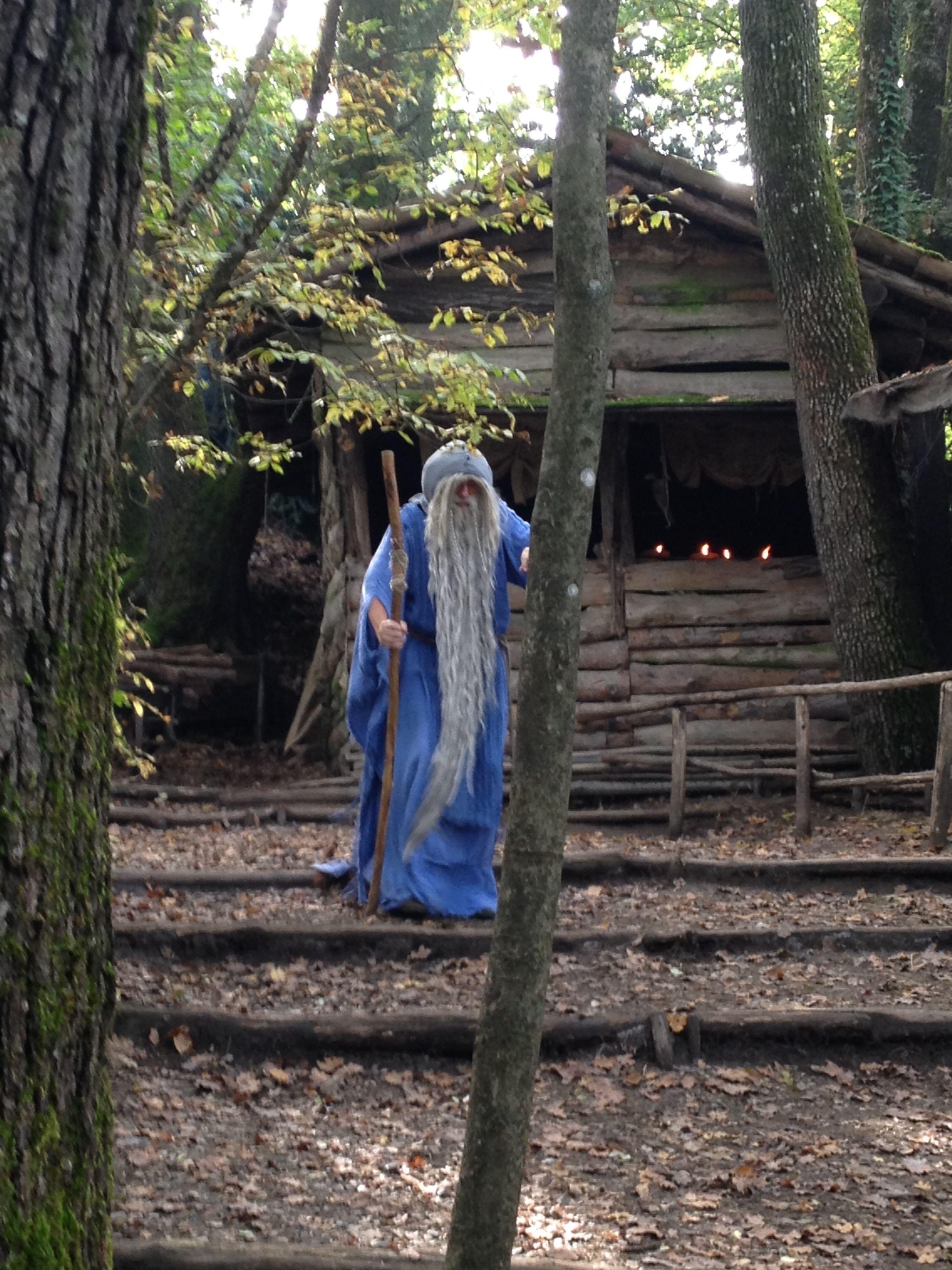 Merlino nella foresta di Broceliande
