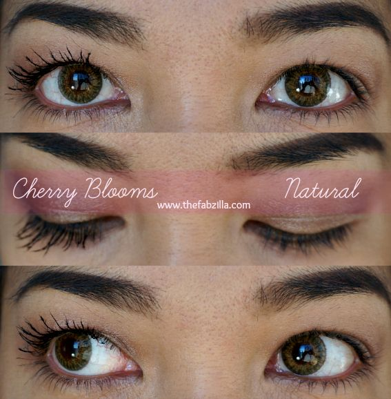 Lashes Dont Lie Check Out My Full Review With Beforeafter Photos