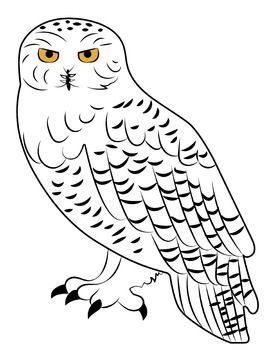 Simple Yet Elegant Clipart Of A Snowy Owl Owls Drawing Owl Drawing Simple Owl Coloring Pages