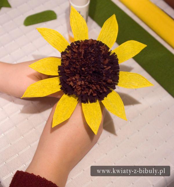 Bs2411 Jpg 600 643 Paper Flowers Annual Flowers Flowers