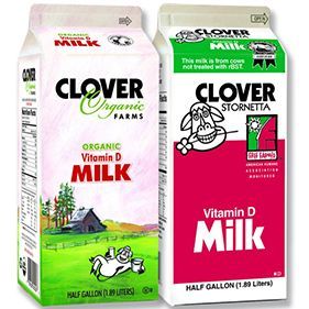 dairy milk and clover essay Dairy farming is a class of agriculture for long-term production of milk, which is  processed for  many crops such as alfalfa, timothy, oats, and clover are  allowed to dry in the field after cutting before being baled into hay to increase  the energy.