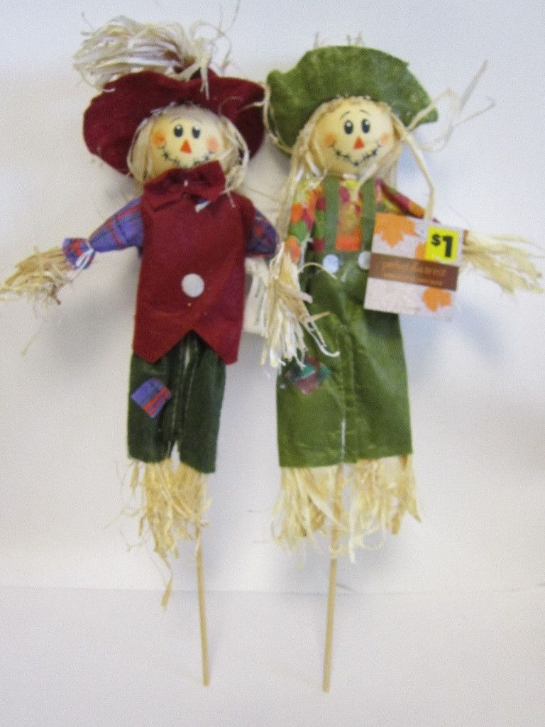 harvest scarecrow picks Case of 48