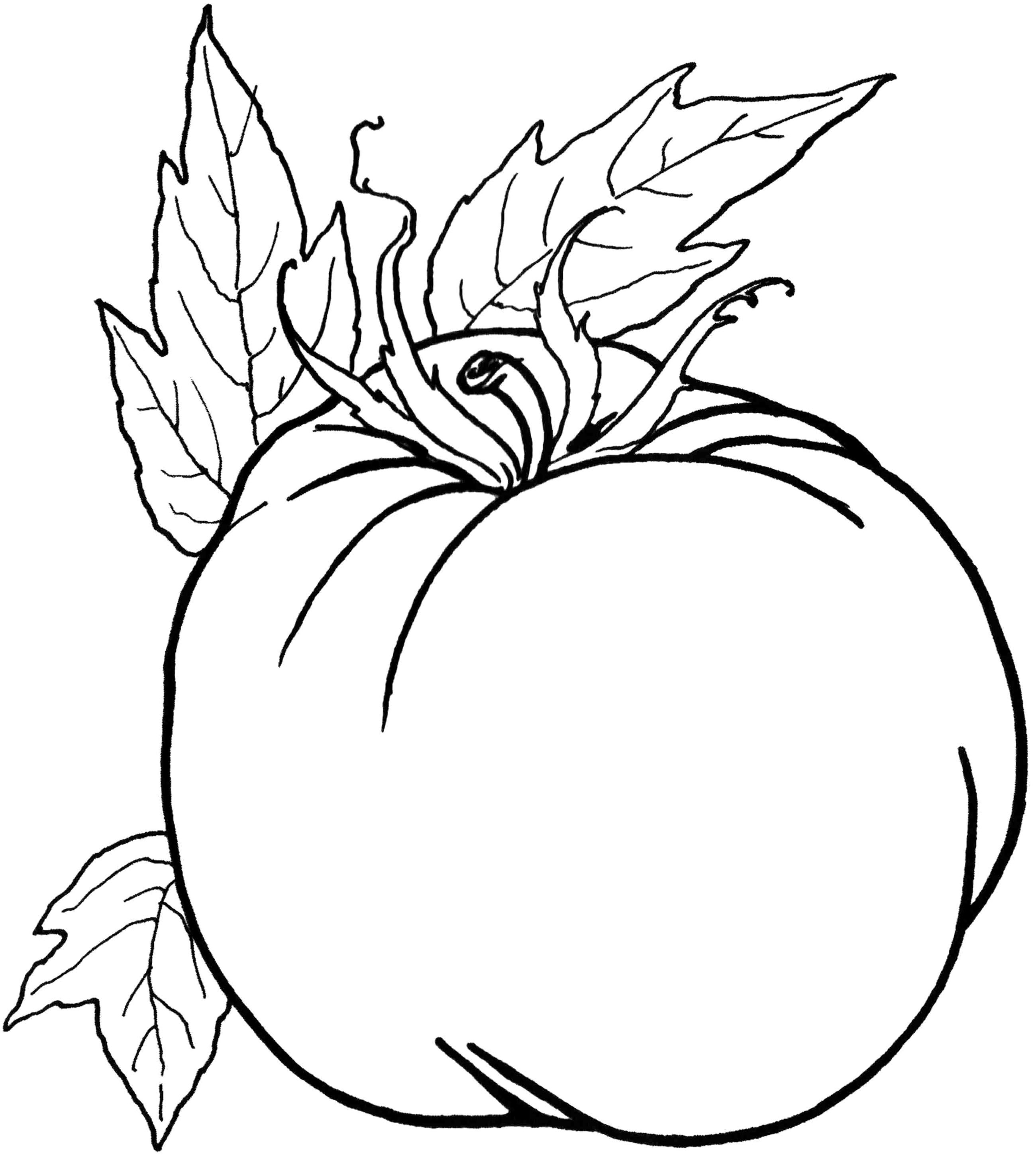 Pumpkin Vegetables Healthy Food Coloring Pages