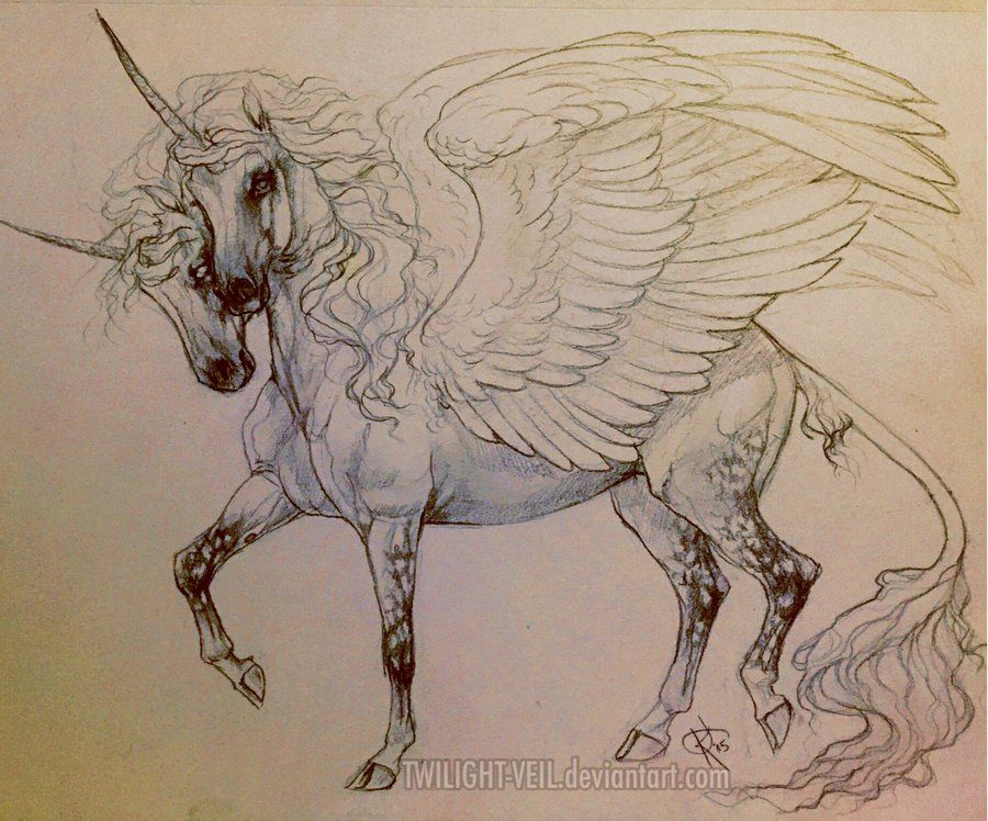 Two Headed Winged Unicorn By Twilight Veiliantart On