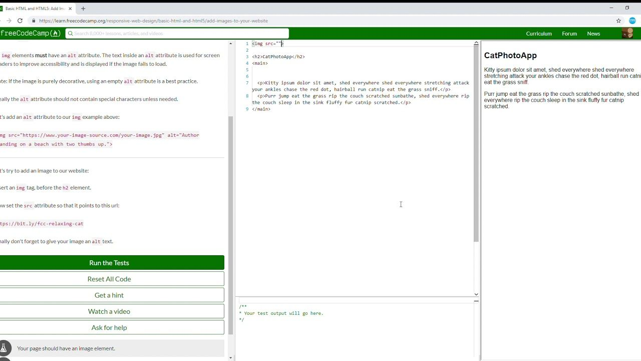 9 27 Basic Html And Html5 Add Images To Your Website Learn Freecodecamp Free Web Design Coding Camp Html5