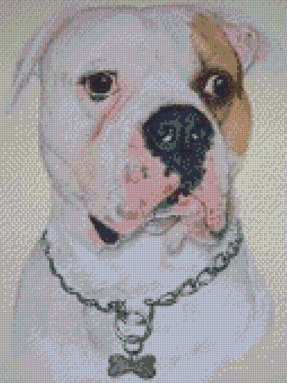 Kreuzstich Diagramm Oder Komplette Kit American Bulldog