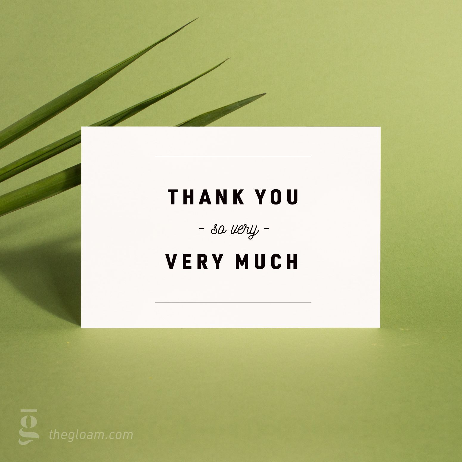 Printable Thank You Cards Set Modern 3 colors Instant  Etsy