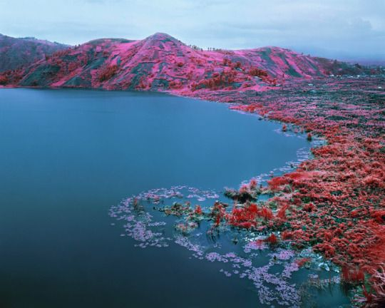 Stunning Pink Landscapes of Congo, Richard Mosse  A beautifully calm and vast pink landscape carries an equally large history. Though it appears to be a land of fairy tales, it is, in fact, the tormented territory of the Congo.