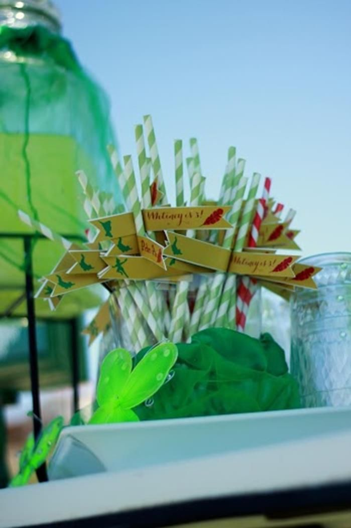 Peter Pan Party Planning Ideas Supplies Idea Decorations