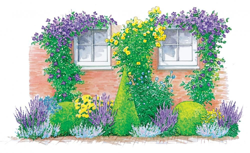 drei staudenbeete einfach nachgepflanzt dem und and beets. Black Bedroom Furniture Sets. Home Design Ideas