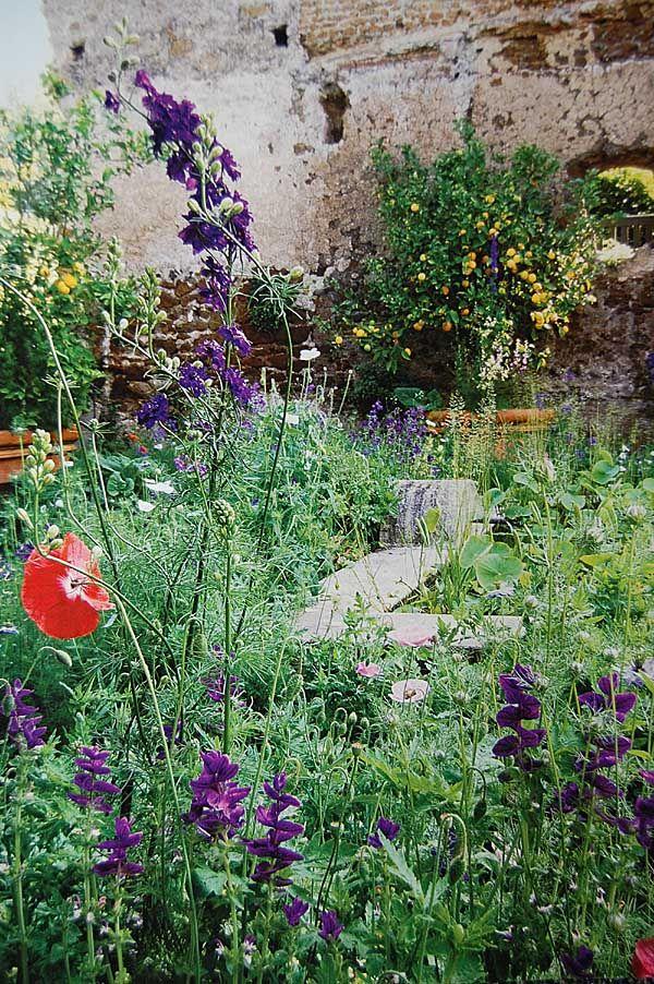 Jardin Sauvage Nature Aurey Jardins Petit Jardin De Ville