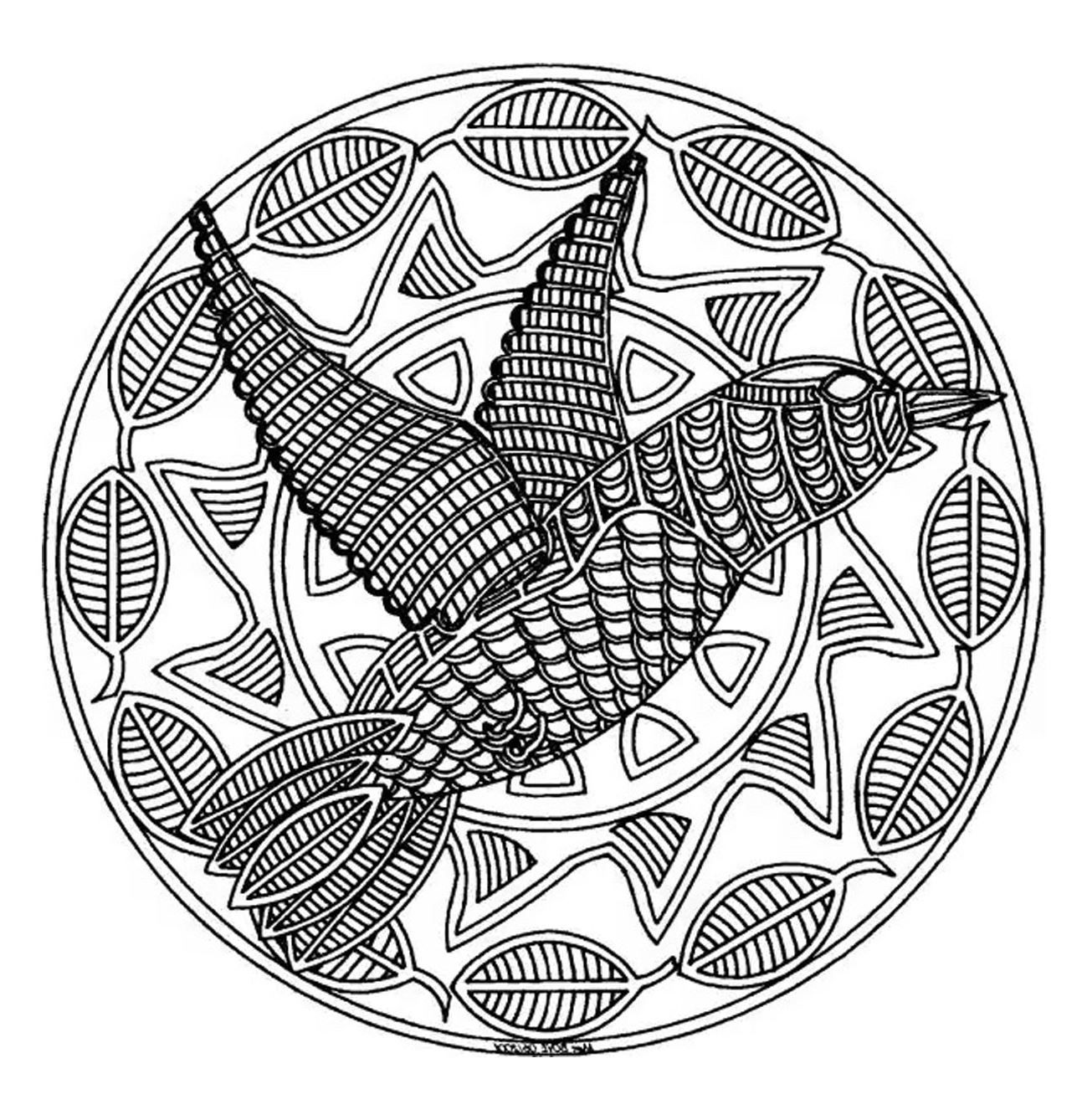 free mandalas page mandala to color animals free bird