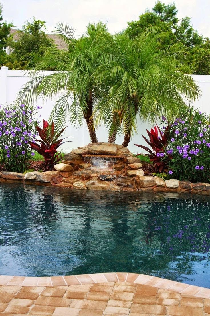 Landscaping Behind Pool Waterfall Google Search