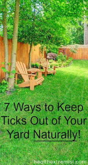 7 Ways To Keep Ticks Out Of Your Yard Naturally Garden Pests