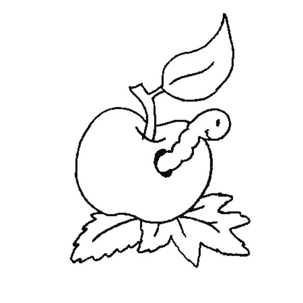 Sur Le Dessin Un Ver De Terre Est Rentre Dans Une Pomme Tombee A