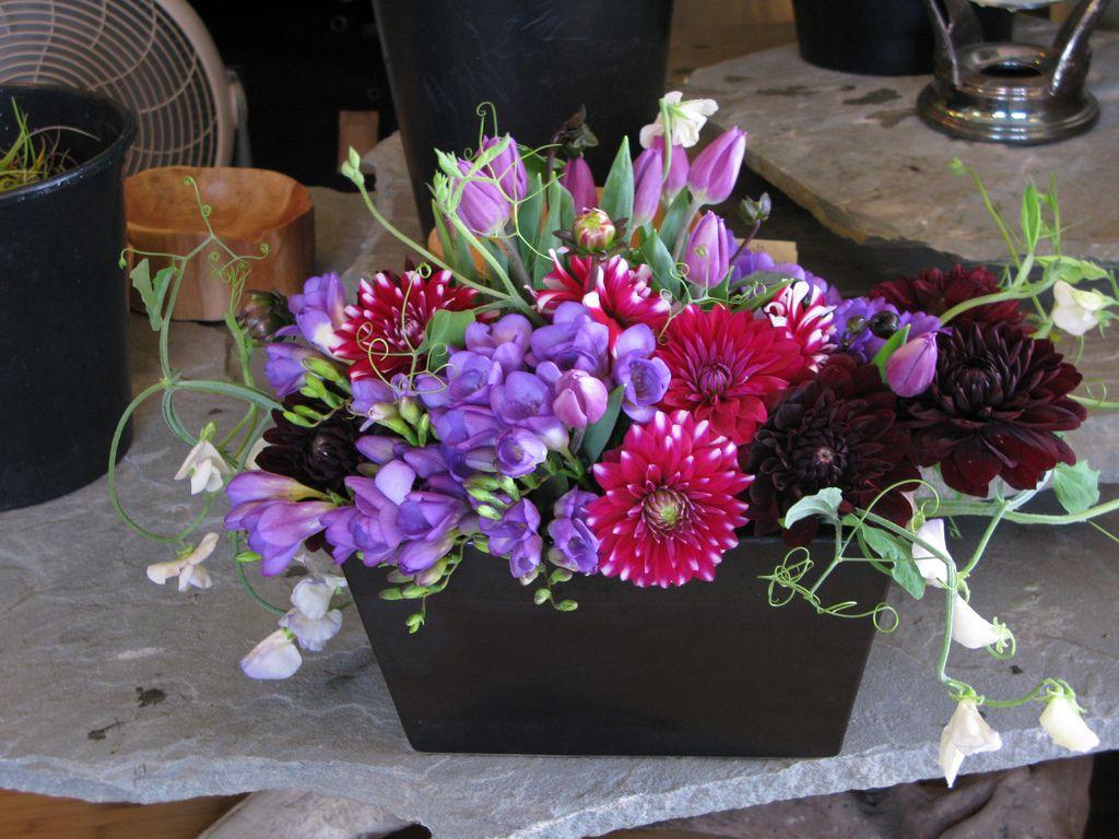 Purple Lush   Floral design, Floral, Color pop