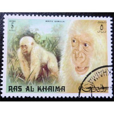 Ras al-Khaima, Wild Life, Primates, White Gorilla, 5 Riyals 1973 used