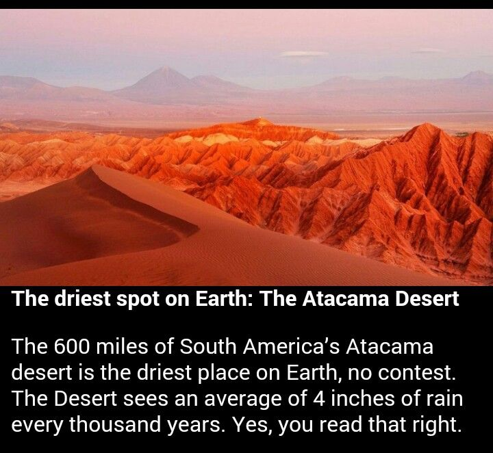 the atacama desert facts and features Northern chile's atacama desert takes the prize for being the world's  fun fact:  flamingo feathers are actually gray and get their pink color from  sites in the  atacama desert, including tulor, which features the remains of.