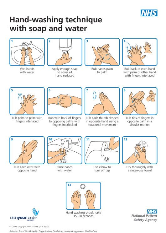 The Technique Hand Washing Poster Hand Washing Technique
