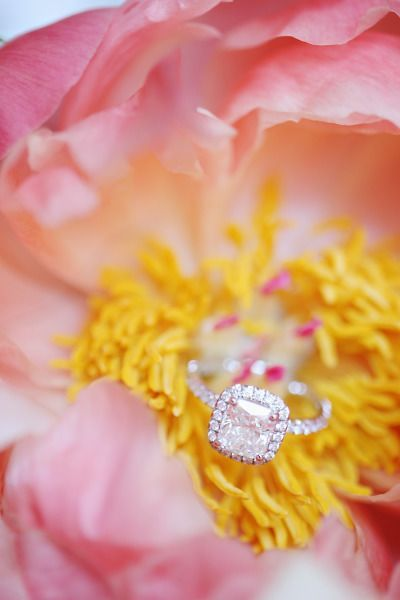 Engagement Rings 2017/ 2018   Gallery & Inspiration | Picture  1975646  Style Me Pretty
