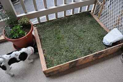 Image from http://petdiys.com/wp-content/uploads/2014/03/Wood-Pallet-Patio-Potty.jpg.