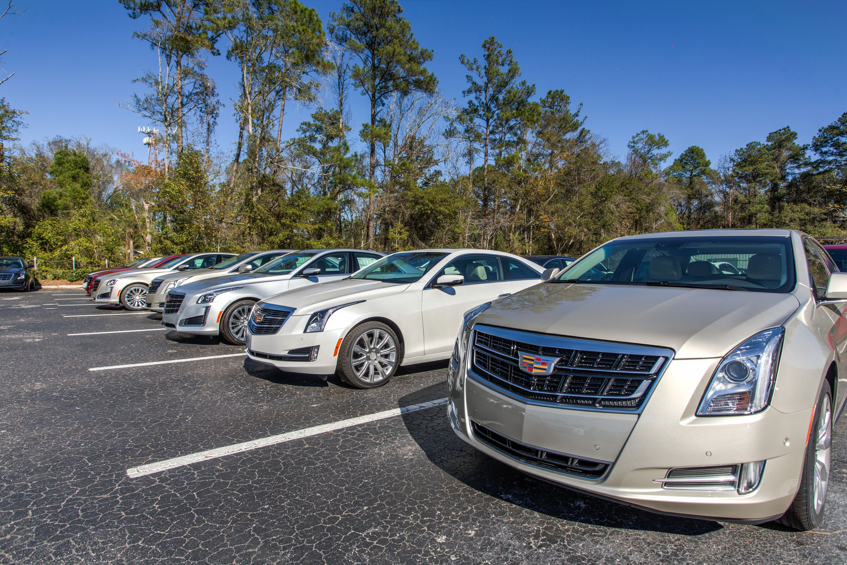 51 best Fields Cadillac Jacksonville images on Pinterest