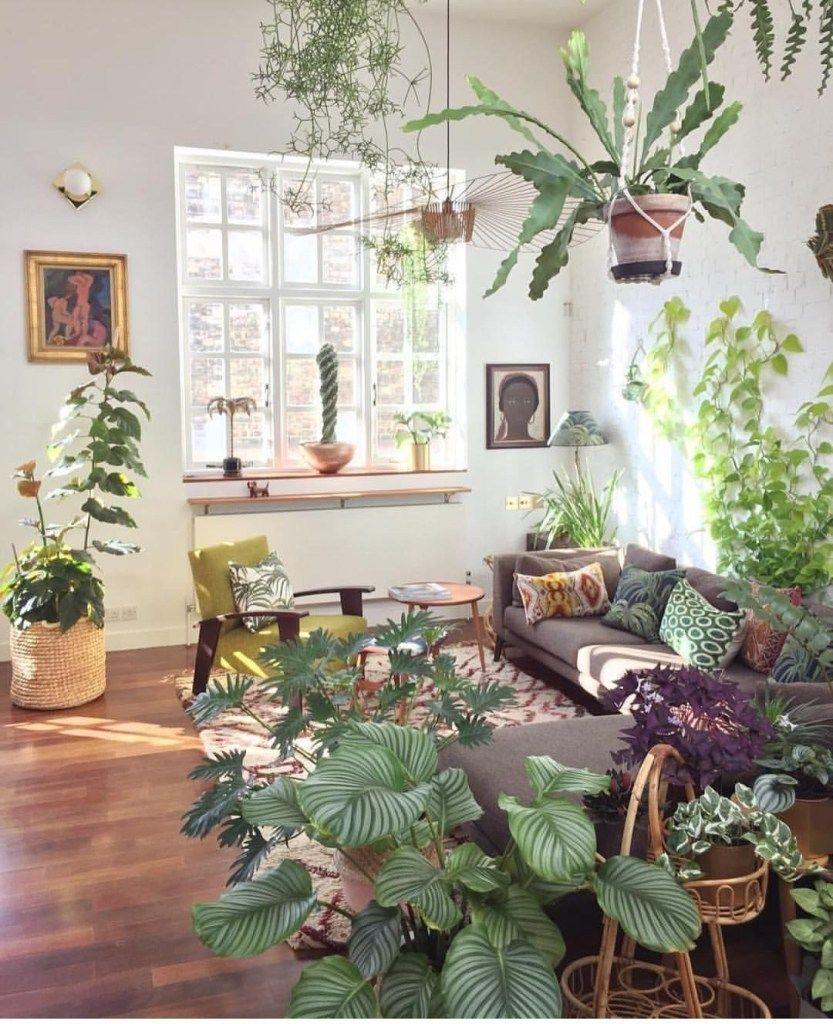40 Indoor Plant Decor Ideas For Small Apartment Homeridian Com Plants Indoor Apartment Apartment Plants Plant Decor Indoor