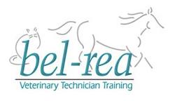 Bel Rea Vet Tech Tech Job School Fun