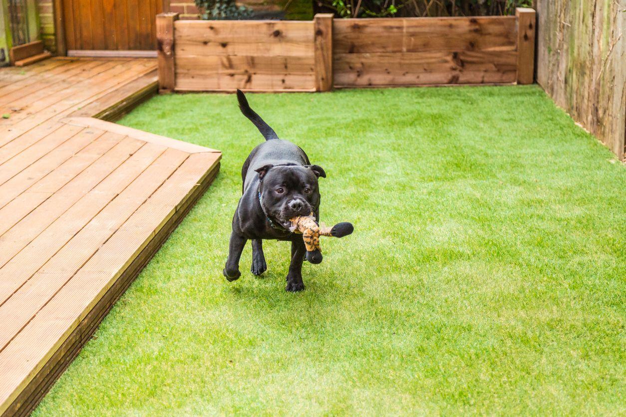 How to install artificial grass Artificial grass for