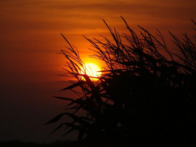 صور شروق الشمس احلي صور وخلفيات للشروق ميكساتك Celestial Nature Sunset