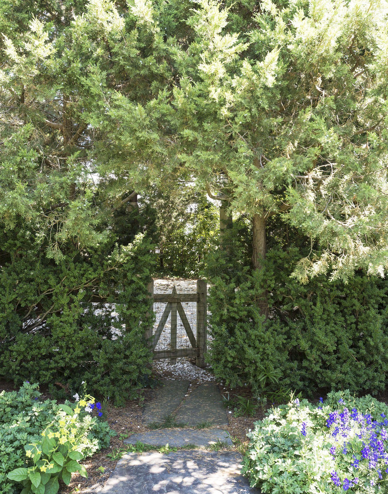4f1acf2bt3y21wna54fhfu7x.wpengine.netdna-cdn.com wp-content uploads 2016 10 machado-silvetti-cape-cod-studio-garden-matthew-williams-DSC-7409.jpg